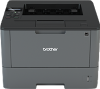 S/W Laser Printer Brother HL-L5000D